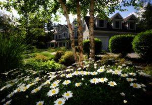 PREI051 | Mortgage Free