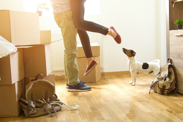 """Should You Make Your New Rental Property """"Pet Friendly?"""""""